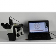 A-5XC倒置金相显微镜